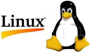 как в Linux вывести настройки IP адресов сетевых карт?